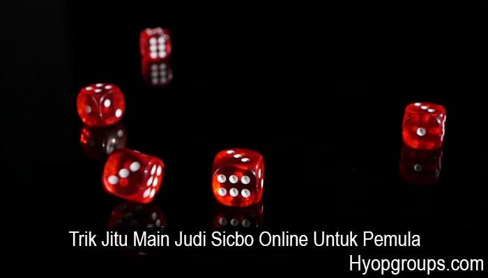 Trik Jitu Main Judi Sicbo Online Untuk Pemula