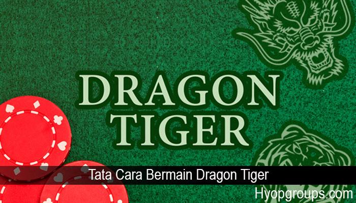 Tata Cara Bermain Dragon Tiger